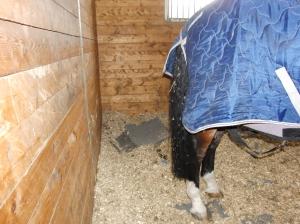 Lance's stall