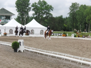 William, first place, first CDI, FEI 5yr old Finale