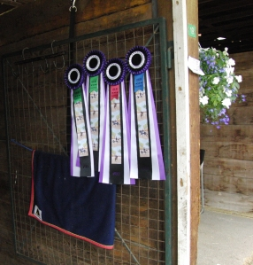 Lance and William's ribbons...their first CDI...Advanced Level and FEI 5 yr old.