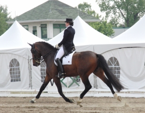 Lance and Lindsey - Extended Trot