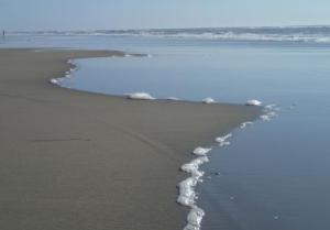 Ivars and I have had a couple of wonderful, total relax days this week.  Low tide, Del Mar.