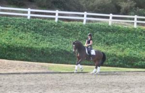 Fred in the big jumper ring at Arroyo yesterday.