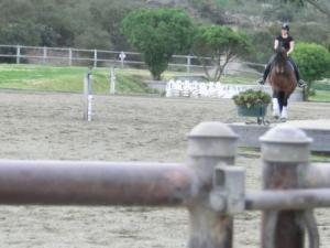 Lance, his first lesson with Shannon yesterday