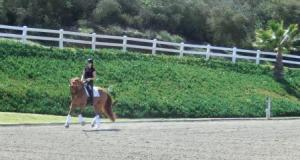 William yesterday, lesson with Shannon