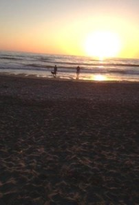 Greg, Aleks and Rosie on the beach, watching the sunset last night.
