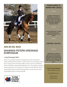 Shannon's Clinic Flyer-page0002 (1)