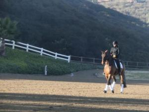 Early morning lesson with Lance, yesterday.