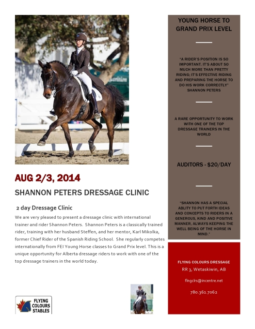 Shannon's Clinic Flyer-page0001